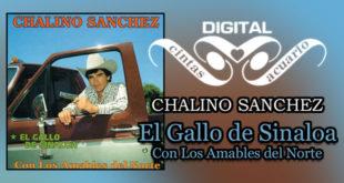 El Gallo de Sinaloa