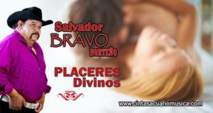 Placeres Divinos disco de Salvador Bravo con Norteño