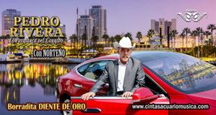 Borradita Diente de Oro – Pedro Rivera Con Norteño