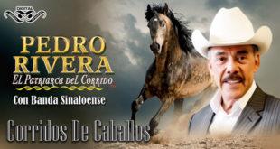 Corridos de Caballos – Pedro Rivera con Banda Sinaloense